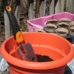 Summer Vegetable Garden Container Ideas